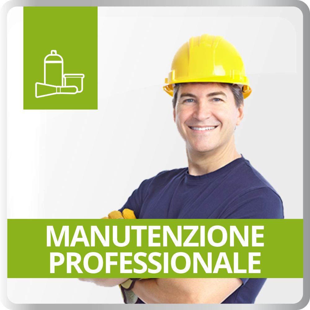 Manutenzione Professionale
